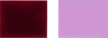 Pigmento-violento-19-Color